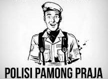 Bimbingan Teknis Jabatan Fungsional Satuan Polisi Pamong Praja