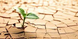 Sosialisasi Pengadaan Tanah dan Administrasi Pertanahan