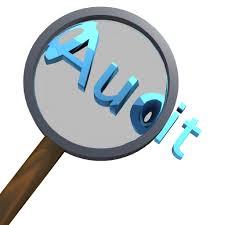 Workshop Tata Cara dan Standar Audit Kinerja bagi Aparatur Pengawasan
