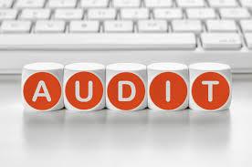 Diklat Audit Kinerja