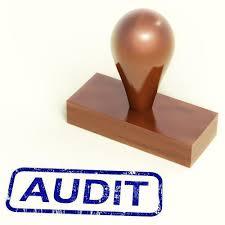 Diklat Tata Cara dan Standar Audit Kinerja