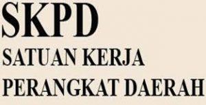 Bimtek Kapasitas Kinerja Aparatur Pemerintah Bagi Bendahara SKPD