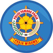 Workshop Pemantapan Tupoksi Satpol PP dalam Penegakan Peraturan Daerah